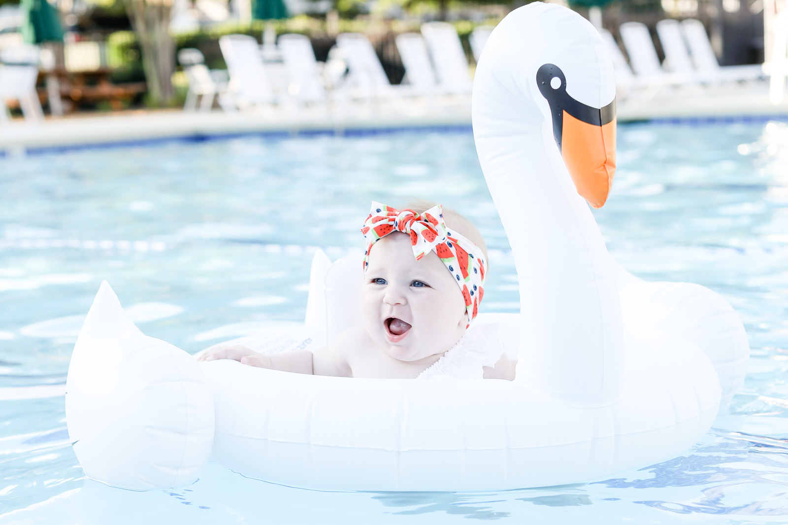 swan baby float flamingo baby float baby bling watermelon bow | elle bowes
